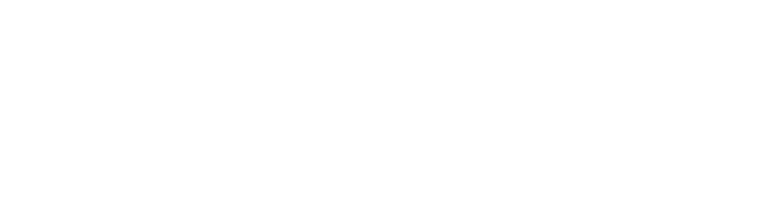 logo_S4N-white